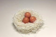 Free Nest Egg Royalty Free Stock Photos - 14522888