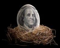 Nest Egg Stock Photography
