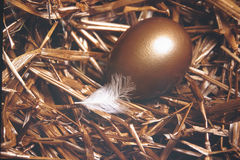 Nest Egg. Golden nest egg with white feather stock photography