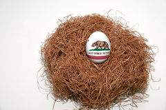 Nest Egg. With state of California flag painted on the egg royalty free stock image