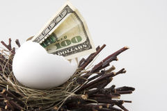Nest egg 2. $100 bill hatching from egg in a nest stock photography