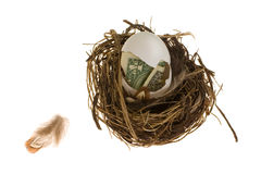 Nest Egg. Concept - money in an egg shell. The egg is in a pretty nest on a white background. A small feather is nearby royalty free stock photography