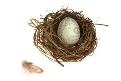 Free Nest Egg Stock Images - 2134644