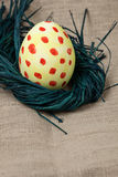 Nest with an egg Stock Images