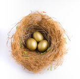 Nest Egg. With three golden eggs Royalty Free Stock Images
