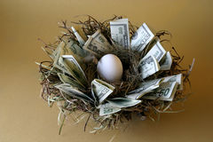 Free Nest Egg Stock Photo - 373140