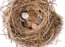 Nest egg. Saving pennies for the future in a nest egg on white stock photo