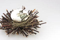 Nest egg 4. $100 bill hatching from egg in a nest royalty free stock photos