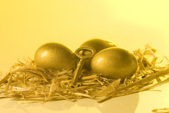 Nest egg. Golden eggs as retirement savings and a key Stock Image