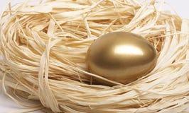 Nest Egg. Gold egg in nest close-up Stock Photo
