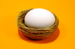 Nest Egg Royalty Free Stock Photography