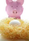 Nest egg Royalty Free Stock Image