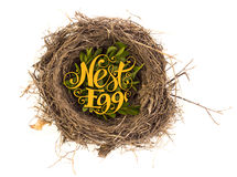 Nest egg. Calligraphy text on top of nest symbolizes savings Royalty Free Stock Photos