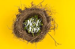 Nest egg. Calligraphy text on top of nest symbolizes savings Stock Photography