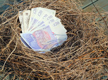 Nest egg. Cash or money in a nest. A neat pile of £20 Bank of England notes neatly placed in a nest made of straw. A bonus for somebody or a nest egg Stock Photography