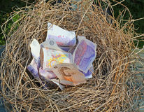 Nest egg. Cash or money in a nest. An untidy pile of £20 Bank of England notes  placed in a nest made of straw. A bonus for somebody or a nest egg Royalty Free Stock Images