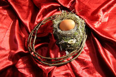 Nest and egg Stock Photo