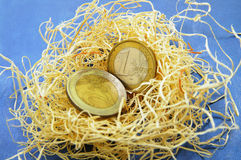 Nest egg euro Royalty Free Stock Images