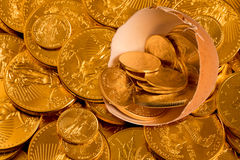 Nest egg with fine gold coins Stock Photos