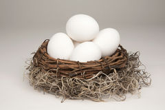 Nest Egg generic Royalty Free Stock Image