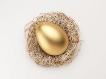 Nest Egg. Golden Egg in Nest  on White Royalty Free Stock Images