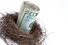 Nest egg of money royalty free stock photos
