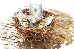Nest egg with money. Nest egg overflowing with money Stock Image