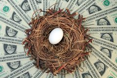 Nest Egg and Money. Nest Egg with Money Background Concept shot Stock Images