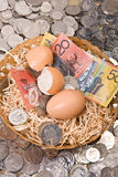 Nest Egg - Money Stock Images