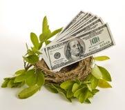 Nest Egg Money Stock Photos