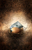 Nest egg. A egg in a nest with a one hundred dollar United States bill.  Concept for savings or investing Royalty Free Stock Images