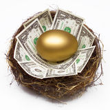 NEST EGG SAVING RETIREMENT FUND FINANCIAL WEALTH PLANNING. Financial Planning and Wealth Management Golden Nest Egg, Saving for Retirement Fund, Estate Planning Stock Photo