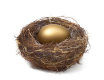 NEST EGG SAVING ESTATE RETIREMENT FUND FINANCIAL WEALTH PLANNING. Financial Planning and Wealth Management Golden Nest Egg, Saving for Retirement Estate Fund Stock Image