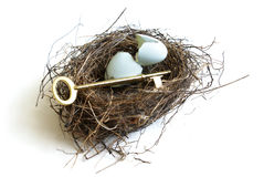 Nest Egg Secrets. A golden key and nest egg to symbolize the secrets to a successful life stock images