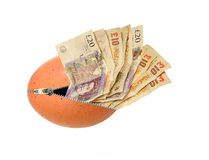 Nest egg tax haven cash Royalty Free Stock Photography