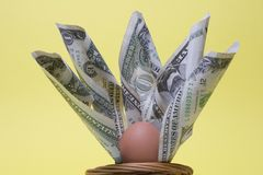 Nest Egg Three. Fan of dollar notes with egg in a basket- concept-nest-egg Stock Image