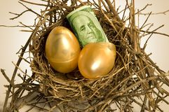 Nest eggs. Two golden nest eggs hatch US dollars in a real twig nest royalty free stock photography