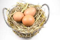 Nest with eggs in basket Stock Image