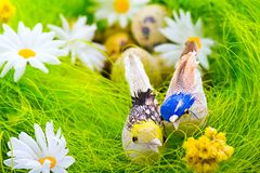 Nest with eggs and birds among flowers Royalty Free Stock Images