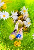 Nest with eggs and birds among flowers Royalty Free Stock Photography