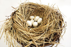 Nest with eggs, close-up Royalty Free Stock Photography