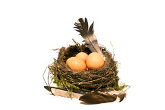 Nest with eggs, Easter celebration in the countryside Royalty Free Stock Images
