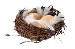 Nest with eggs and feathers. Bird nest with eggs and feathers. isolated on the white background Stock Photos