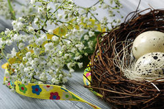 A nest with eggs Royalty Free Stock Photography