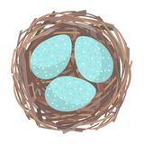 Nest with eggs. Eggs inside the bird nest. Vector illustration vector illustration