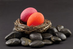 Nest Eggs Signal Financial Alarm Royalty Free Stock Photography