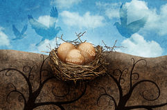 Nest eggs. Eggs in a nest with the words IRA, savings and social security on them. Concept for investing and the different ways to save for retirement royalty free stock photos