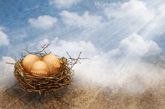 Nest eggs. Eggs in a nest with the words IRA, savings and social security on them. Concept for investing and the different ways to save for retirement stock photography
