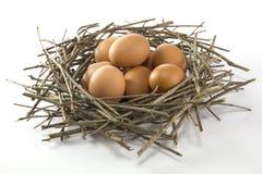 Nest en ei Stock Foto
