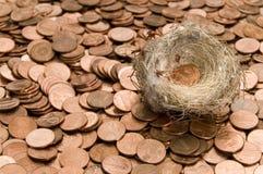 Nest en pence royalty-vrije stock afbeeldingen